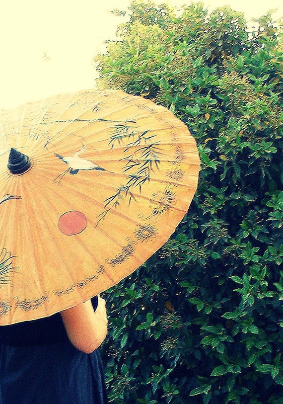 Hand painted Japanese Parasol, Vintage Asian Paper Umbrella, white cranes on noon skies,  Oriental home decor
