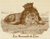 Bird Cage AcanthusLion Sleeping Crown French Text Digital Image Download Transfer To Pillows Tote Tea Towels No. 1252