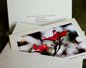 all occasion greeting card, pretty, romantic, pink flowers, nature photography, ready to ship, eco friendly, recycled paper
