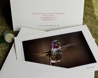 Hummingbird photo, handmade greeting card, feathers, nature photography, StrongylosPhoto