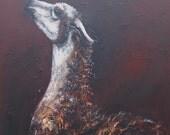 Lucy the Llama Card by Suzy Sharpe