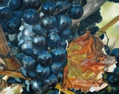 Artist Print of Original Oil Painting Baco Noir by J. L. Fleckenstein 2010 8 x 10 inch print on Kodak Endura Metallic paper