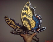 Sunshine Wake -Striking Eastern Tiger Swallowtail Wings (Papilio glaucus) Example