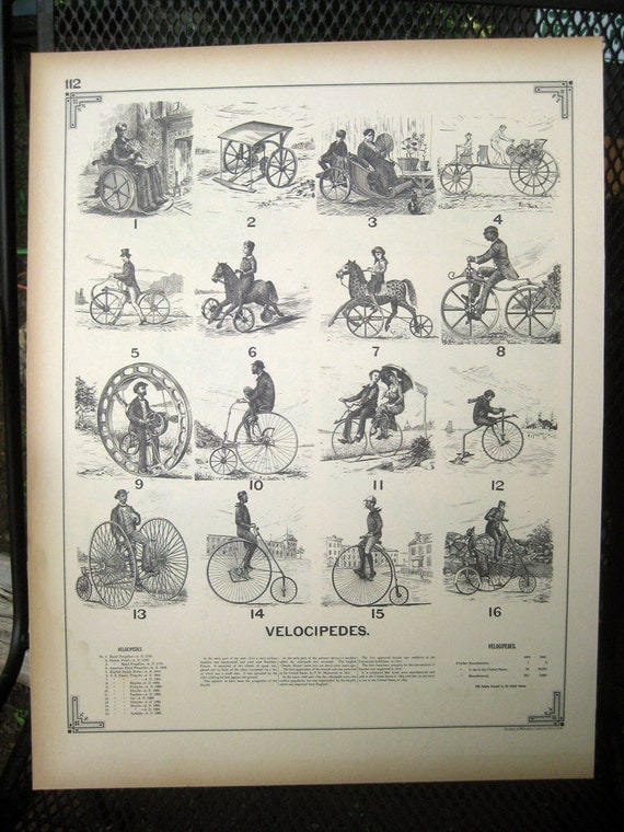 Velocipedes Vintage Reproduction of Antique Lithograph 16x20 book plate Bicycle Bicycles Vintage Bike