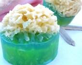 Natural Prime Sea Wool Sponge Soaps (vegan friendly)