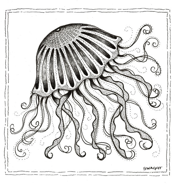 Print of black and white Jellyfish pen and ink drawing