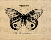Papillon Monarch Butterfly French Vintage - Burlap Digital Download Paper Iron On Image Transfer To Pillows Cushion Tote Bag Tea Towels b242