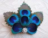 Bridesmaid Peacock feather hair clip, comb, rhinestone, hair fascinator, dress sash