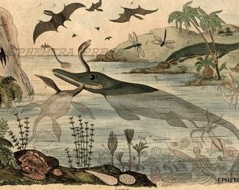 DURIA ANTIQUIOR PREHISTORIC vintage scene delightful dinosaur and extinct fauna - paleoart