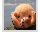 Hand Needle Felted Octopus  - Cantaloupe