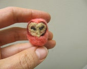 Miniature Needle Felted Wool Pet Barn Owl ---Meet Inga