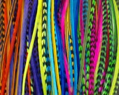 SALE - 50 for 50 - Extra Long - Feather Hair Extensions - Professional Salon Grade - Assorted Colors