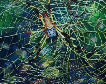 Banana Spider Print of original painting