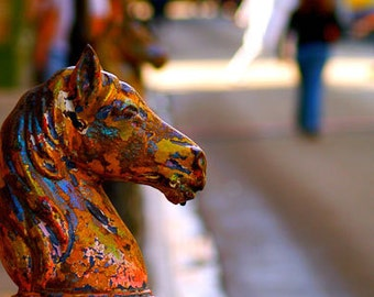The Hitching Horse- New Orleans Historic Art- Photograph- Street Photo- Bright Colors