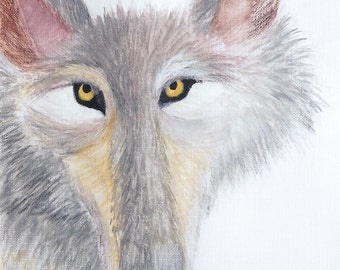 Weird Wildlife Series - Curious Coyote Caricature - Print