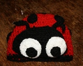Ladybug Hat  - Ready to ship -