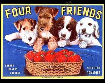 Εκλεκτά φρούτα με σκύλους..