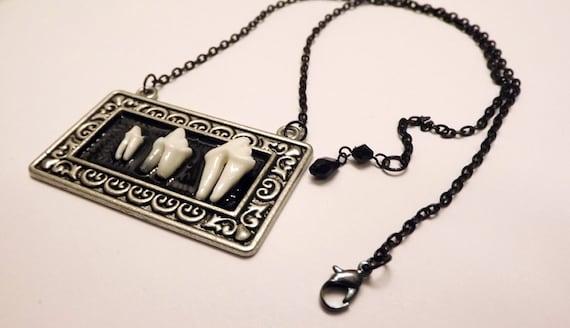 Real Mammal Teeth Rectangular Necklace