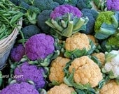 Broccoli and Cauliflower Photograph 5x7 Photo Nature Photography Organic Vegetables Farmers Market Fruit Produce Picture Garden