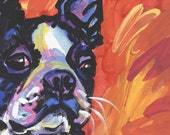"Boston Terrier modern Dog art print pop dog art bright colors 13x19"" LEA"