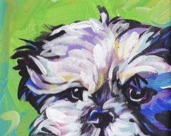 Shih Tzu art print modern Dog art pop dog art bright colors 12x12 inch
