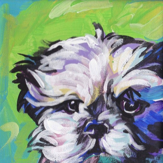 Shih Tzu portrait art modern Dog pop dog art bright colors 8x8 giclee print