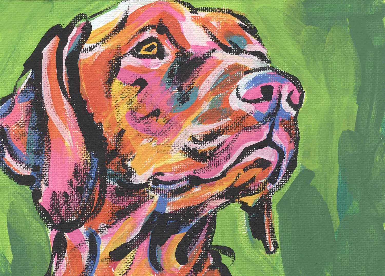 Hungarian vizsla modern dog art print pop dog art bright for Painting of your dog