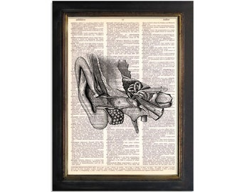 Parts of The Ear - Anatomy Diagram Print on Beautifully Upcycled Vintage Dictionary Paper - 8x10.5