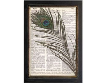 A Peacock Feather - Print on Beautiful Upcycled Vintage Dictionary Paper - 8x10.5
