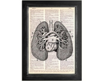 The Lungs  - Vintage Anatomy Art Print on Upcycled Vintage Dictionary Paper - 8x10.5