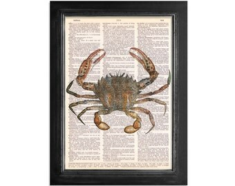 Brown Crab - Ocean Life - Marine Life Print on Vintage Dictionary Paper - 8x10.5