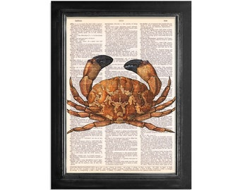 Ocean Life - The Black Tipped Stone Crab - Printed on Vintage Dictionary Paper - 8x10.5