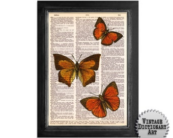 3 Orange Butterflies - Delightful Butterflies - Butterfly Art Print on Upcycled Vintage Dictionary Paper - 8x10.5