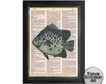 Spotted Fish Blue Green - Fish Art Print on Vintage Dictionary Paper - 8x10.5
