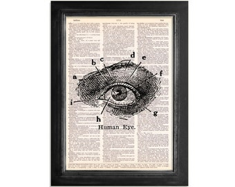The Human Eye - Anatomy Art Print on Vintage Dictionary Paper - 8x10.5