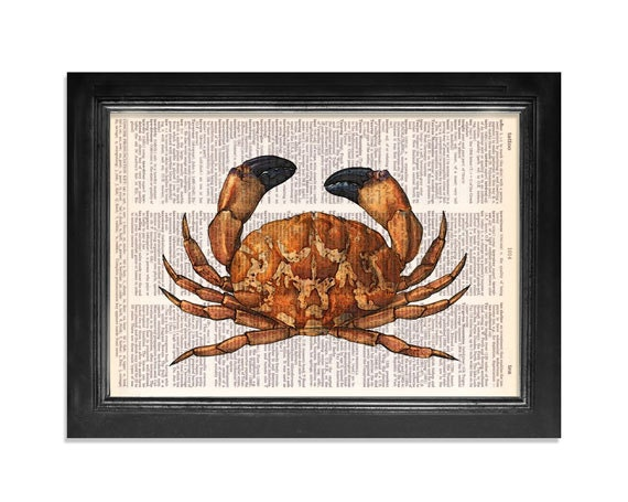 The Black Tipped Crab Horizontal Print - Ocean Life Series - Print on Vintage Dictionary Paper - 8x10.5