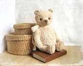 PATTERN Download to create Teddy like Bear Vanilly 9 inches