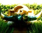 "SALE - Artistic Steer Horns -  Title: ""Serenity"" Texas Mounted Steer Horns"