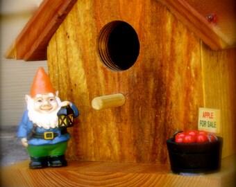 My Little Blue Gnome Birdhouse