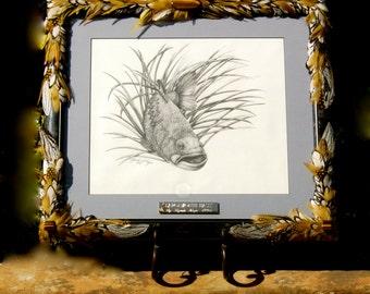 "SALE Artistic Original Bass Art  ""Largemouth Bass"" An Original With Embellished Frame"