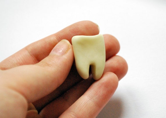 Tooth Brooch
