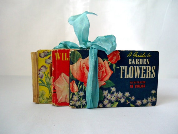 Vintage Flower Guide Book Collection Illustrated 1945