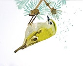 Bird watercolor original art - Goldcrest - yellow spring decor cute bird nature lover gift mothers day card