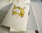 Cat's Hair yellow postcard