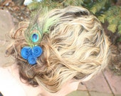 Hair Clip- Bright blue and green Peacock feather with blue paper flower