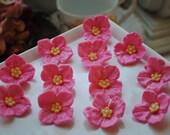 Edible Tropical Fondant Flowers