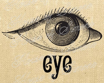 Eye Eyeball Optometry Antique Vintage Download Graphic Image Art Transfer burlap tote tea towels Pillow French Gift Tag Digital Sheet 1032