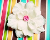 Small Ivory Flower Hair Clip. Hair Accessory. Pink Button. 2 inches. Gift. Wedding Accessory. Baby. Toddler Girls. Teen. Woman