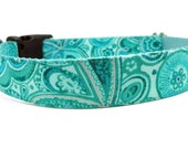 Cute Dog Collar Pretty Paisley Turquoise and Blue- Splish Splash