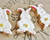 Cotton Tail Bunny Decorated Sugar Cookies